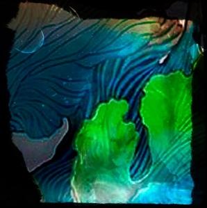 Algues bleus Technique mixte 2016